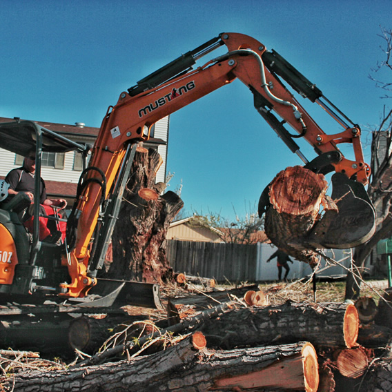 stump removal from Utah Trees & Landscaping